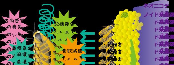 ネオニコチノイド系農薬