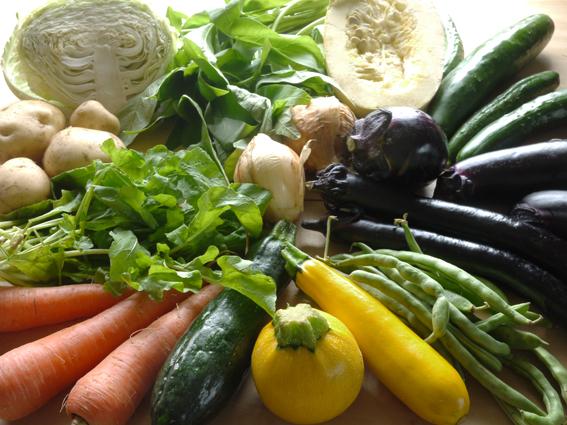 百姓農園野菜セット-色調整