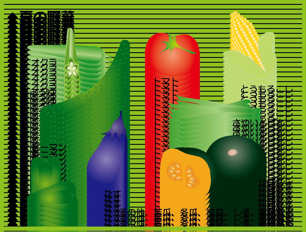 野菜の旬ー夏