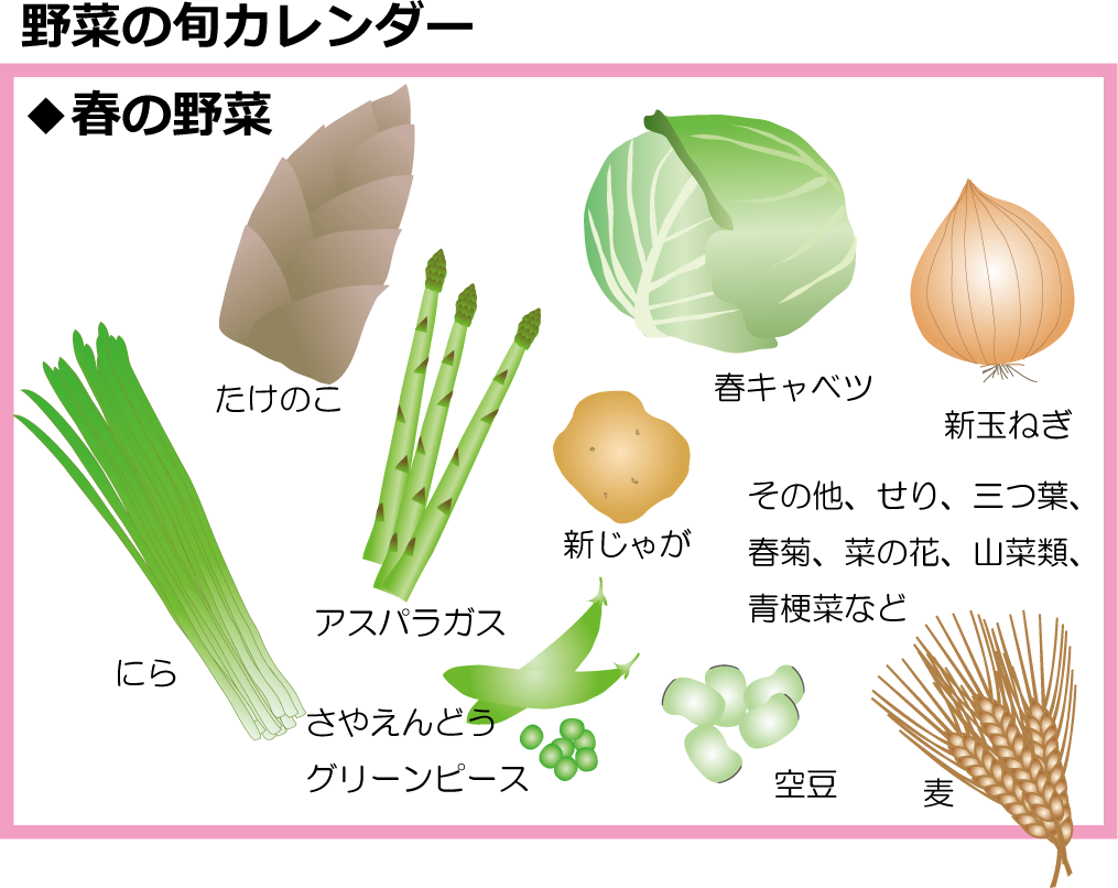 野菜の旬ー春